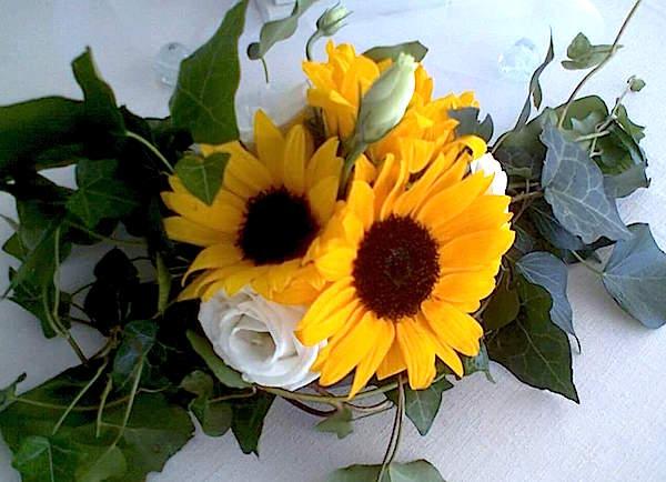 Girasoli Matrimonio Maggio : Un matrimonio all aperto con romantico addobbo di girasoli