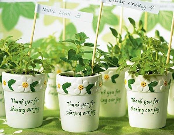 Bomboniere Matrimonio Green.Un Matrimonio Eco Solidale Con Bomboniere Green